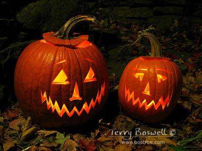 Jack-o-lanterns, Sugar Loaf, NY