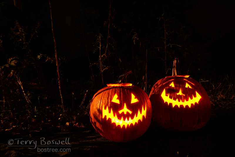 DSC05065-2cp2-jack-o-lanterns-2015-bostree-sugar-loaf-ny-terry-boswell-wmtbb